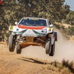 buggy-2-ruedas-motrices-t1-fia-250cv-1310kg_0