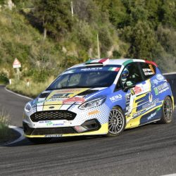 Ford Fiesta Rally 4 (2)