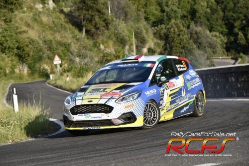 Ford Fiesta Rally 4 (2)